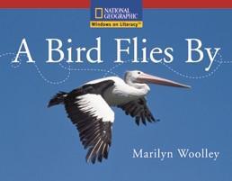 win-em-a-a-bird-flies-by