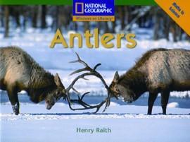 win-fl-c-antlers