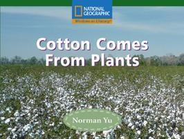 win-fl-b-cotton-comes-from-p