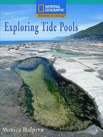 win-flu-a-explore-tide-pools