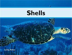 rdr-nonfict-shells