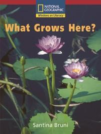 win-em-b-what-grows-here