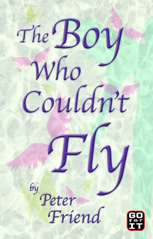 the-boy-who-couldnt-fly