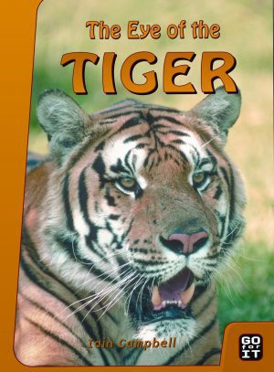 the-eye-of-the-tiger